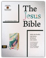 NIV Jesus Bible Artist Edition, Comfort Print--soft leather-look, multi-color/teal (indexed)