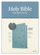 KJV Large-Print Thinline Reference  Bible, Filament Enabled Edition--soft leather-look, teal