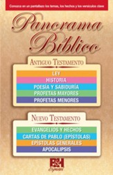 Bible Overview - spanish edition