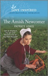 The Amish Newcomer