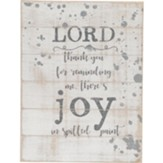 Lord Thank You For Reminding Me There's Joy in Spilled Paint Shiplap Plaque