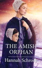 The Amish Orphan
