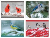 Winter Birds Christmas Cards, Box of 12