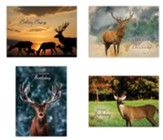 Wildlife Birthday Cards, Box of 12