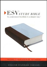 ESV Personal-Size Study Bible, TruTone, Chocolate/Blue, Ivy Design - Slightly Imperfect