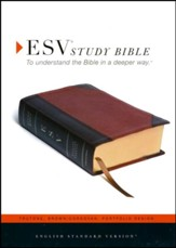 ESV Study Bible (TruTone, Brown/Cordovan, Portfolio Design, Indexed), Imitation Leather