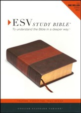 ESV Study Bible (TruTone, Forest/Tan, Trail Design, Indexed), Imitation Leather - Slightly Imperfect