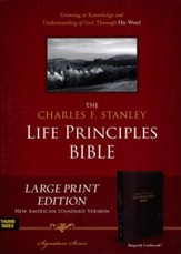 NASB Charles F. Stanley Life Principles Bible, Large Print Imitation leather, Burgundy (indexed) - Imperfectly Imprinted Bibles