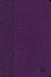 The Passion Translation (TPT): New Testament with Psalms, Proverbs, and Song of Songs - 2nd edition, imitation  leather, purple