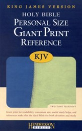 KJV Giant Print Reference Bible, Imitation Leather, Blue/Green - Slightly Imperfect