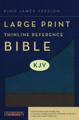 KJV Large Print Thinline Reference Bible Flexisoft Slate/Blue - Slightly Imperfect