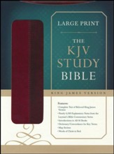 KJV Study Bible, Large Print, Leather, imitation - Imperfectly Imprinted Bibles