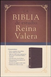 Biblia de Estudio Reina Valera 1909, Piel Elaborada Marrón   (RV 1909 Study Bible, Bonded Leather, Brown)