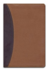 HCSB Large Print Personal Size Reference Bible, Dark Brown & Light Brown Simulated Leather