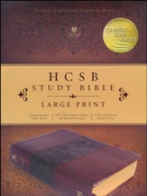 HCSB Study Bible, Large Print, Mahogany LeatherTouch