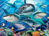Smiling Sharks Puzzle, 300 Pieces
