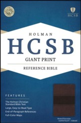 HCSB Giant Print Reference Bible, Brown and Chocolate LeatherTouch, Thumb-Indexed