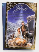 Jesus, Nativity Scene, Christmas Cards, Box of 18
