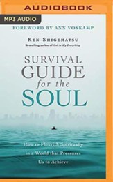 Survival Guide for the Soul: How to Flourish Spiritually in a World that Pressures Us to Achieve - unabridged audiobook on MP3-CD