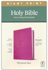 NLT Giant-Print Personal-Size Bible, Filament Enabled Edition--soft leather-look, peony/pink