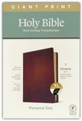NLT Giant-Print Personal-Size Bible,  Filament Enabled Edition--genuine leather, brown (indexed)