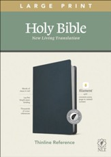 NLT Large-Print Thinline Reference Bible, Filament Enabled Edition--genuine leather, blue (indexed)