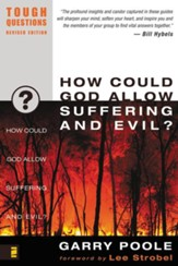 How Could God Allow Suffering and Evil?/ New edition - eBook