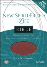 NIV New Spirit Filled Life Bible, Imitation leather, butterscotch/auburn