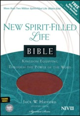 NIV New Spirit Filled Life Bible, Imitation leather, butterscotch/auburn--indexed - Slightly Imperfect
