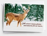Winter's Beauty, Deer, Christmas Cards, Box of 18