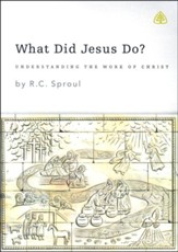 What Did Jesus Do?, DVD Messages