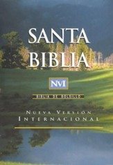 NVI Biblia de Bolsillo Negra (Pocket Bible, Imitation Leather Black)