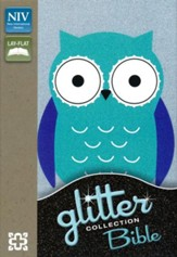 NIV Glitter Bible Collection--soft leather-look, turquoise/owl