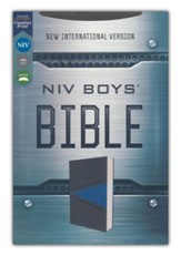 NIV Boys Bible--soft leather-look, gray/blue