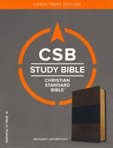 CSB Study Bible, Large Print Edition, Mahogany LeatherTouch