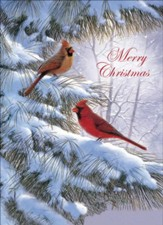 Winter Song Christmas Cards, Box of 12
