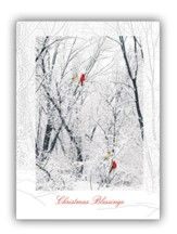 Winter Color, Christmas Blessings, Cards, Box of 12