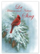 Cardinal on a Snowy Branch Christmas Cards, Box of 12