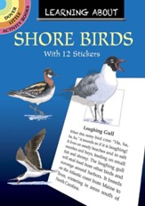 Learning About Shore Birds