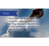 Scripture Cards, Trust, Isaiah 40:31, Pack 25