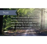 Scripture Cards, Trust In The Lord, Prov 3:5-6, Pack 25