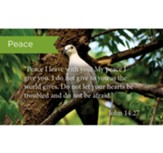 Scripture Cards, Peace, John 14:27, Pack 25