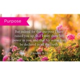 Scripture Cards, Purpose, Exodus 9:16, Pack 25