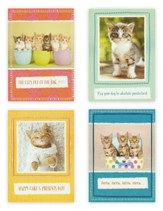 Birthday, Curious Kittens, Boxed cards (KJV)
