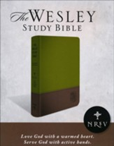 NRSV Wesley Study Bible: Sage  Thicket Decotone, imitation leather