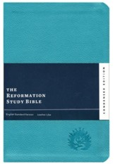 ESV Reformation Study Bible, Condensed Edition - Turquoise, leather-like