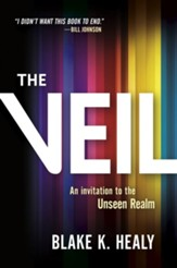 The Veil: A Window into the Spirit World - eBook