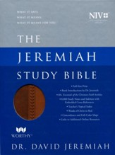 NIV Jeremiah Study Bible, Imitation Leather, brown indexed - Slightly Imperfect