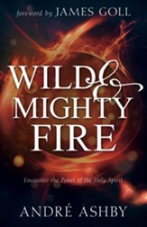 Wild and Mighty Fire: Encounter the Power of the Holy Spirit - eBook