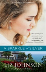 A Sparkle of Silver (Georgia Coast Romance Book #1) - eBook